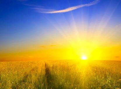Blue sky Sun Setting Over Harvest Field